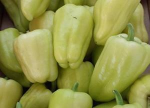 Domača paprika in paradižnik